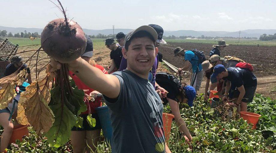 Teen holding vegetable at an Israeli farm